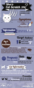Infographic - What is Cat Scratch?